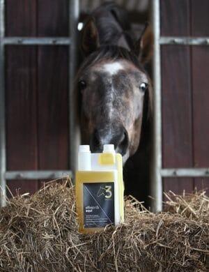 Paard Omega-3 olie