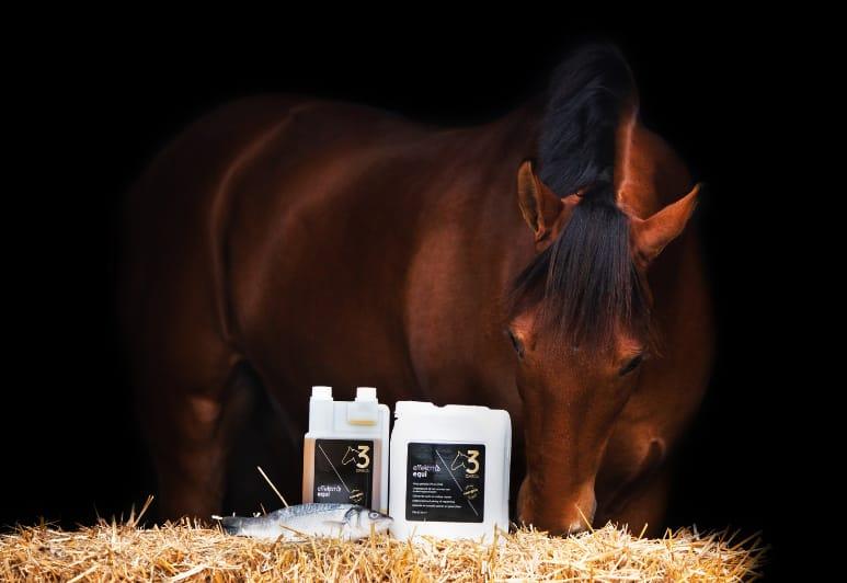 Effektri paard omega-3 visolie