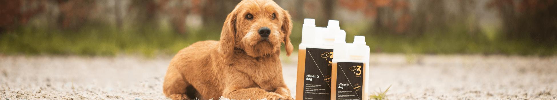 Hond visolie omega-3 effektri
