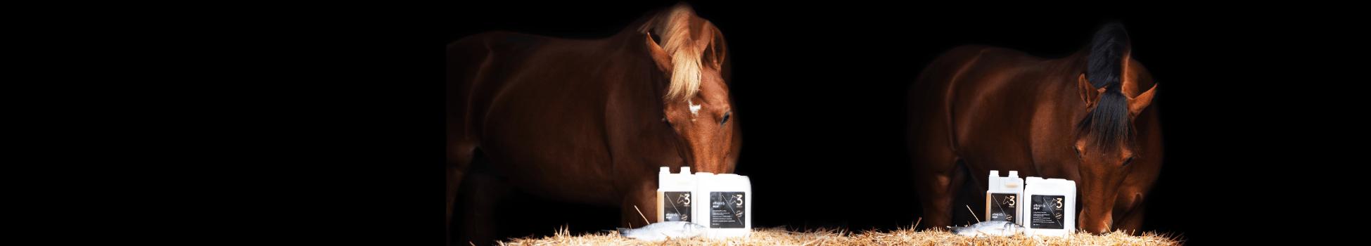 Horses effektri vis olie Effektri